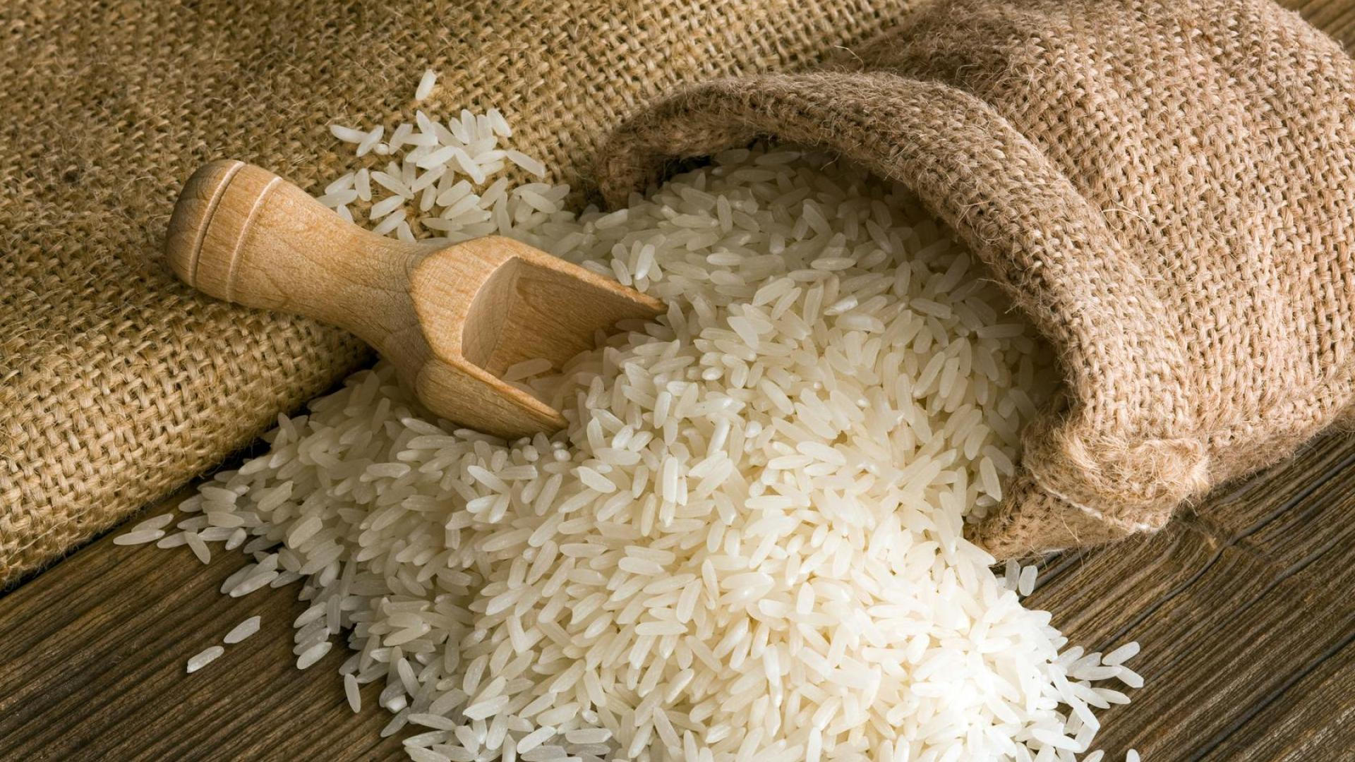 Tout ce que vous devez savoir à propos du riz !