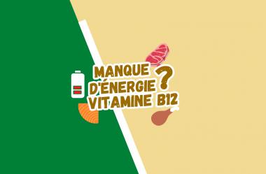 Tout sur la vitamine B12 – Etes-vous tout le temps sans énergie et dynamisme ?